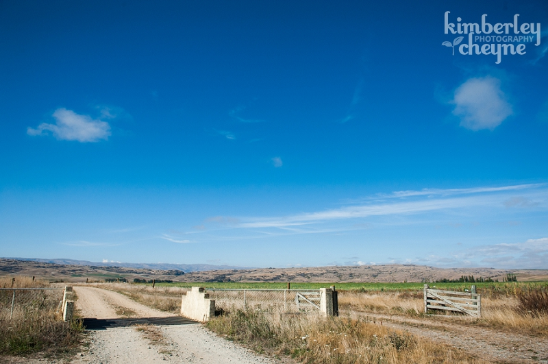 Central Otago Wedding Photographs