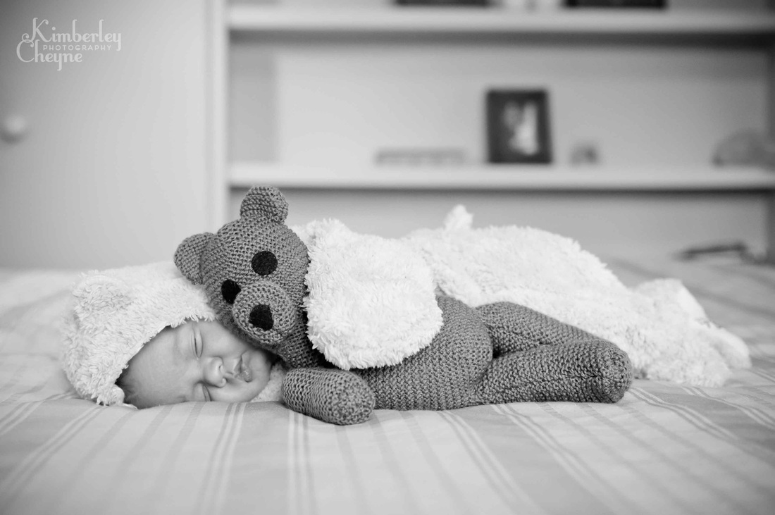 Teddy bear newborn